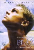 Pláž (DVD)