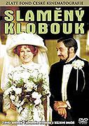 Slaměný klobouk (DVD)