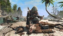 Assassin's Creed 4: Black Flag (PS4) - 3
